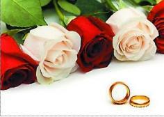 最实用的英语结婚祝福语 说出你最真诚的祝福