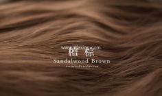 檀棕色头发图片欣赏 檀棕色头发明显吗